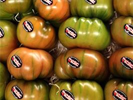 Tomates pata negra 2.0